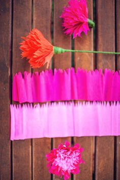 Best 11 Instruction Layout – crepe paper flower pom pom – full post on Pretty Quirky Pants – SkillOfKing. Paper Flower Wall, Tissue Paper Flowers, Diy Arts And Crafts, Crafts For Kids, Construction Paper Flowers, Diy Paper, Paper Crafts, Fleurs Diy, How To Make Paper Flowers