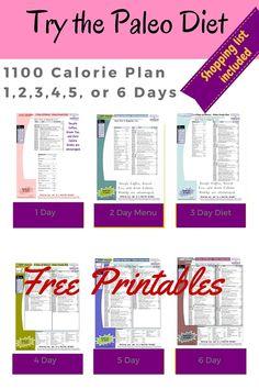 1100 Calorie Diet
