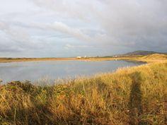 nice Green light for world's first tidal lagoon