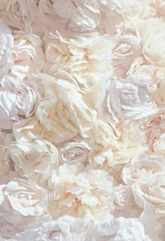 """phuckyourfeelingsthough: """"lamorbidezza: """"Comme des Garcons Spring 2012 Details """" P. Ivory Roses, White Roses, White Flowers, Beautiful Flowers, Colorful Roses, Romantic Flowers, Cream Roses, Shades Of White, Black And White"""