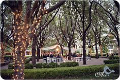 Marie Gabrielle Weddings Dallas Elegant Crystal Wedding Chandeliers Vases and Decor Ceremony Draping With Lights in the Trees Gorgeous Wedding Lighting Aves Photography0157