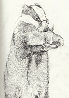 Recently I have decided to take a more observational life like approach to the characters and trying to stay in ke. Animal Sketches, Animal Drawings, Art Sketches, Badger Illustration, Illustration Art, Beautiful Creatures, Animals Beautiful, Animal Sleeve Tattoo, Animal Books