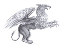 Griffin by ~Canyx on deviantART