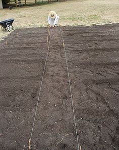 Vegetables Step-by-Step : How To Start A Vegetable Garden.with this step-by-step article, it's fun and easy!Growing Vegetables Step-by-Step : How To Start A Vegetable Garden.with this step-by-step article, it's fun and easy! Vegetable Garden For Beginners, Starting A Vegetable Garden, Gardening For Beginners, Gardening Tips, Vegetable Gardening, Veggie Gardens, Gardening Supplies, Gardening Services, Hydroponic Gardening