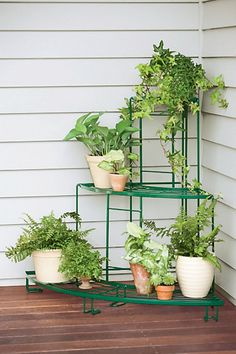This tiered plant stand set features one Straight Plant Terrace and two Quarter-Round Terraces.
