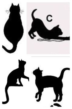5b66b95750 30 Best cat theme party images | Silhouettes, Black cat silhouette ...
