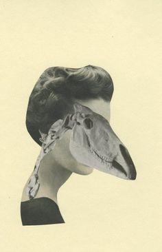 Vivienne Strauss - Prehistoric