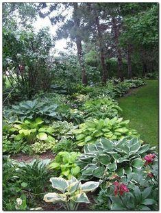 Backyard Garden Flowers Tips backyard garden pool suits.Backyard Garden Landscape How To Make. Landscape Design, Garden Design, Landscape Plans, The Secret Garden, Shade Garden Plants, Hosta Plants, Cacti Garden, Lawn And Garden, Terrace Garden