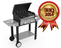 Barbecue Vulcano Ferraboli: barbecue dell'anno 2014