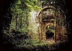 Forest Portal, Granada, Spain photo via stephanie