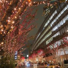 """This photo was taken at the same place as the previous photo. This is the """"CANDLE&RED"""" version. Which version do you prefer? #japan #tokyo #christmaslights #travel #christmas #roppongihills #roppongi"""