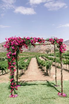 A rustic arbor covered in pink blooms sets the stage for this vineyard wedding. repinned by wedding accessories and gifts specialists http://destinationweddingboutique.com