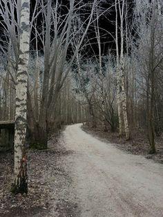 Polku Country Roads