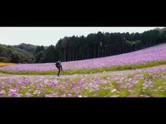 Jilla Movie Songs - Kandaangi Kandaangi song - Mohanlal, Kajal, Vijay