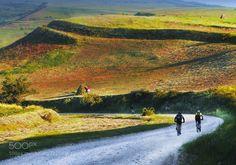 shadow riders by amunteanu66
