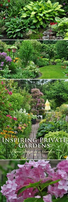 379 best Garden Ideas and Designs images on Pinterest | Gardening ...