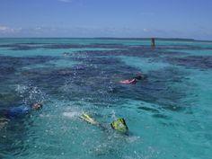 Snorkeling fun!
