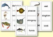 Zelf Ned. tekst toevoegen: Matching Cards - Sealife