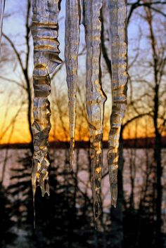 Icicles sunset