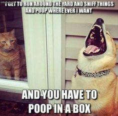 #funnydoglaughter