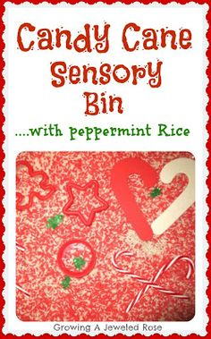 Candy Cane Sensory Bin - pinned by @PediaStaff – Please Visit  ht.ly/63sNt for all our pediatric therapy pins