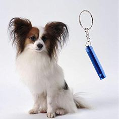 Chinatera Dog Whistle Keychain Pendant Keyring Pocket Pets Accessories Metal ** New and awesome dog product awaits you, Read it now  : Dog carrier