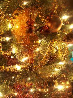 christmas+tree+2011