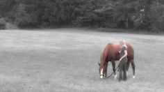 Oh my gosh! This made my heart melt!! A must watch for any equestrian out there!