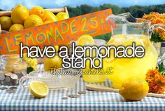 Have a lemonade stand. I should make one this summer.... Better yet I should make a cookie stand :D