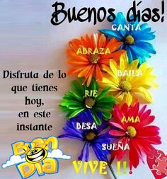 Buen Día: Buenos días What Is Hanukkah, Happy Hanukkah, Good Morning Messages, Good Morning Quotes, Israel Holidays, Winter Holidays, Christmas Holidays, Good Morning In Spanish, Pickup Lines
