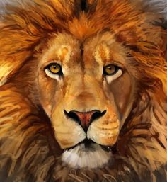Gaze by Masked-lion.deviantart.com on @deviantART