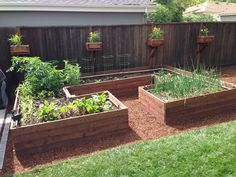 Garden cleanup done. Waiting for the warm weather.  Raised garden bed.