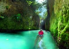 10 Things to Do Near Occidental Grand Xcaret All Inclusive Resort