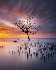 Photo by @aswan_photos - G A L A U.  #longexpoelite #master_shotz #splendid_shotz #jaw_dropping_shots #gottolove_this #serikat_fi #geonusantara #instanusantara #greatshotz #global_hotshotz #globalcapture #ig_shotz_le #ig_shotz #longexposure_shots #longexposure_kings #sunset_vision #main_vision #sunset_madness #ig_masterpiece #ig_exquisite #ig_myshot #arte_objetiva #hny_indonesia #nikon_tr_ via Nikon on Instagram - #photographer #photography #photo #instapic #instagram #photofreak #photolover…