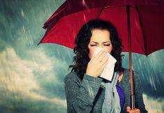 Calendula Benefits & Uses for Skin, Insect Bites, Anti-Cancer & More - Nedette Calendula Benefits, Matcha Benefits, Health Benefits, Health Tips, Health Care, Women's Health, Zinc Deficiency, Flu Symptoms, Boost Immune System