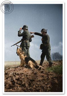 WW2 German Elite LAH Infantry NCO Unterscharfuhrer Shoulder Board
