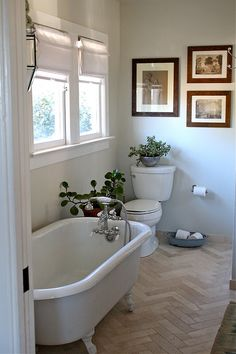 Herringbone stone floor tiles, clawfoot tub, timber picture frames and plant greenery breathes life into this bathroom Bathroom Inspiration, Bathroom Ideas, Small Bathroom, Green Bathrooms, Bathroom Spa, Downstairs Bathroom, Bathroom Designs, Herringbone Tile Floors, Limestone Flooring
