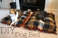 Bear would love this Cheap DIY dog bed.