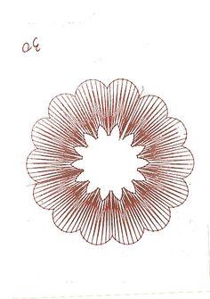 flores - Sylvie Harmand - Picasa Web Albums