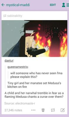 FMA picture described by someone who has never seen FMA, lol