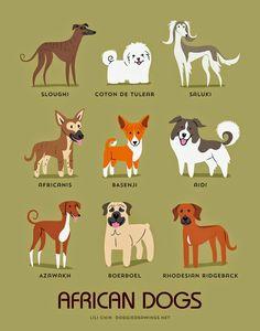 African dogs (c) Lili Chin @ doggiedrawings.net
