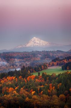 Mt. Hood as seen from Jonsrud viewpoint, Oregon at sunset in late fall. [OC], [3256x4908]