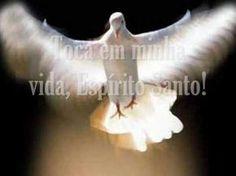 O Terceiro diaapós O Aviso é o Dia da Efusão do Espírito Santo…