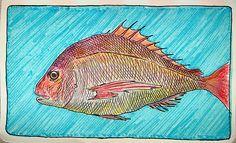 fish  #moleskine