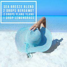 Sea Breeze Diffuser Blend