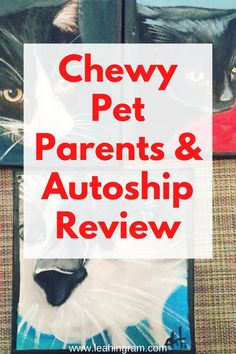 This blog post about Chewy pet supplies reviews the autoship program for dog and cat food as well as other pet products. It also includes stories from customers who have received Chewy pet portraits from the comapny.  #chewypetsupplies #chewypetproducts #chewypetportraits #chewypetfood Dog Rooms, Buy Pets, Dog Hacks, Cat Food, Shopping Hacks, Pet Products, Dog Owners, Pet Portraits, Best Dogs