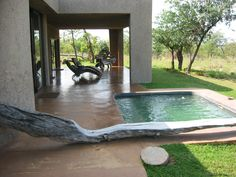 Our own pool! Camps, Lodges, Safari, African, Earth, Awesome, Campsis, Cabins