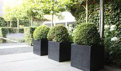 Deze+sfeervolle+tuin+won+de+derde+prijs+tijdens+de+Nederlandse+tuinverkiezingen