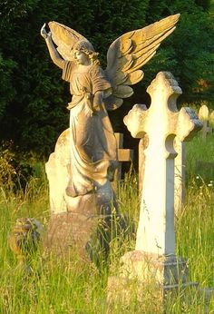 angel in an old cemetery ~ ღ Skuwandi Cemetery Angels, Cemetery Statues, Cemetery Headstones, Old Cemeteries, Cemetery Art, Angel Statues, Graveyards, Angels Among Us, Angels And Demons
