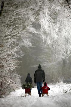 """Walking In A Winter Wonderland"""